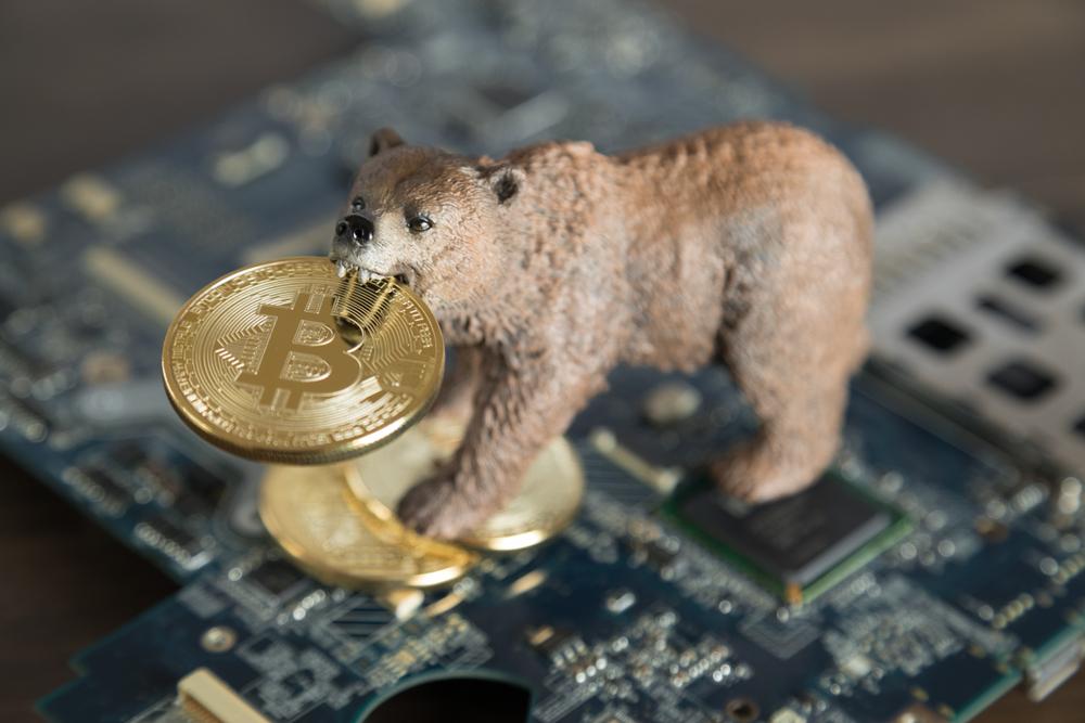 Bitcoin Recovery Bear Market